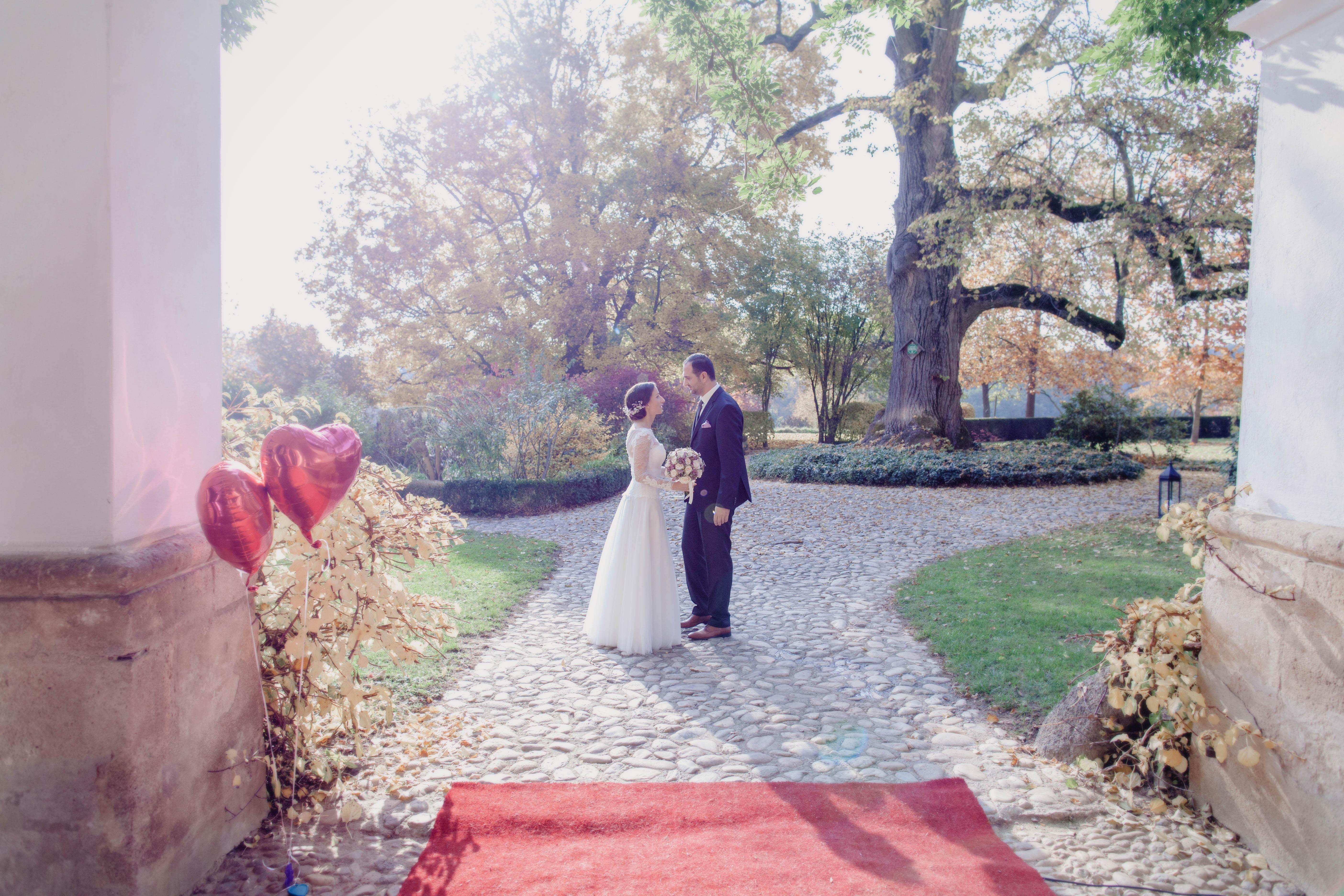 Loveflare-Hochzeit-Bogen